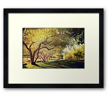 A Day for Dreaming Framed Print