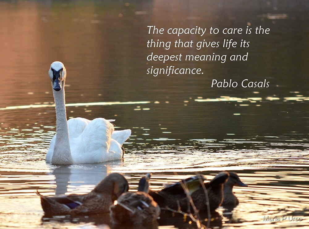 Caring by Maria P Urso