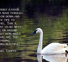 Do Yourself a Favor by Maria P Urso