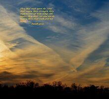 Isaiah 40:31 by Maria P Urso