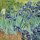 Van Gogh Irises, Vintage Post Impressionism Art by nadil