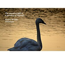 The Greatest Gift Photographic Print