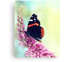 Double Butterfly Canvas Print
