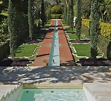 Formal Garden, Shangri La by David Davies