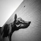 Numbat by ROA by blueeyesjus