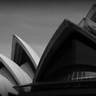 View of the Sydney Opera House #4 by Helen Eaton