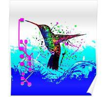 hummingbird Program Poster