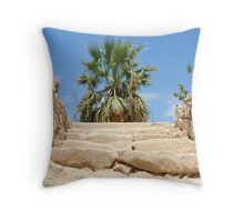 Tomb Of The Kings Throw Pillow