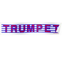 Trumpet Red white & Blue II Poster