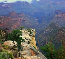 Grand Canyon Fog by Daniel Owens