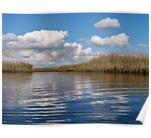 Sawgrass Water and clouds Poster