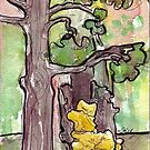 Trees with Yellow Fungus by Ela Steel