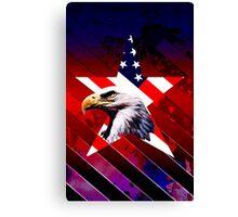 american star the Bald eagle Canvas Print