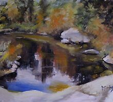 Adirondack Pond by Patricia Seitz