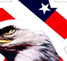 american star the Bald eagle Sticker