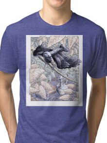 The Crow and the Pitcher Tri-blend T-Shirt