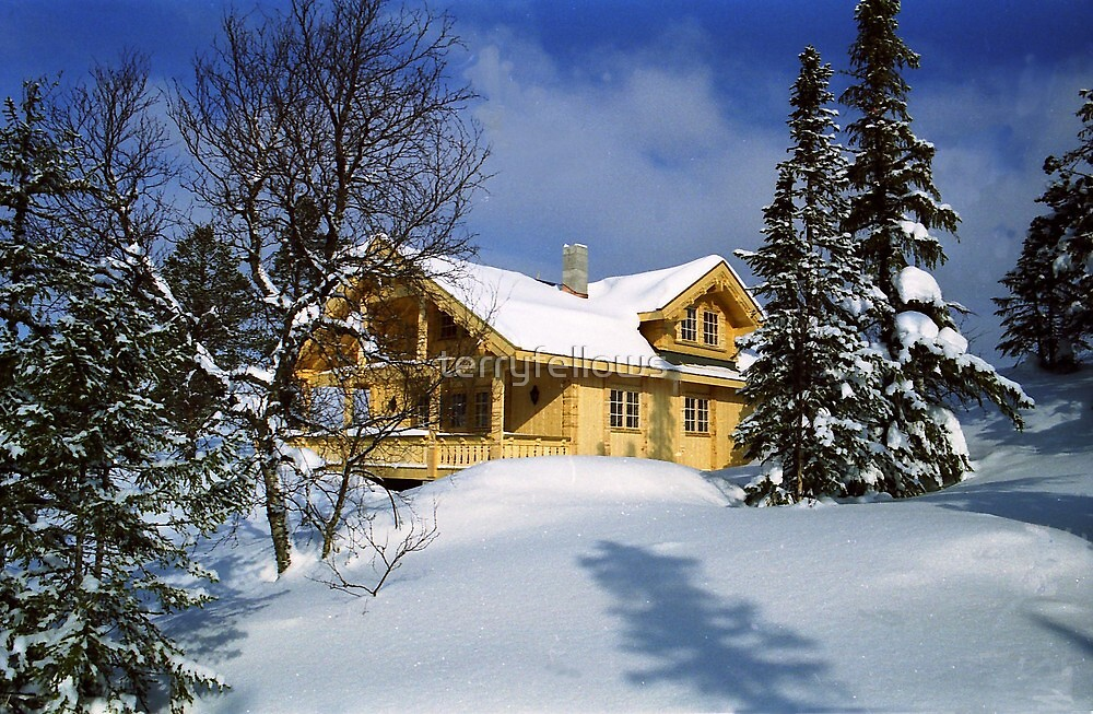 """"""" Norwegian Winter """" by terryfellows"""