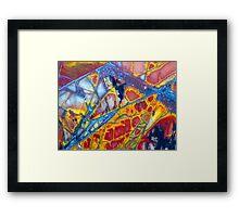Dragonfly Wing (Cherry Creek Jasper) Framed Print
