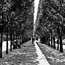 Palais Royal by MorganaPhoto