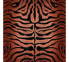 SKN2 BK MARBLE COPPER (R) Photographic Print