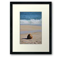 Praia Lopes Mendes Framed Print