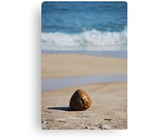 Praia Lopes Mendes Canvas Print