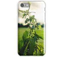 Leaves in the Sun iPhone Case/Skin
