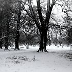 Dog Walkers in the snow by SWEEPER