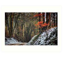 Winter Warmth Art Print