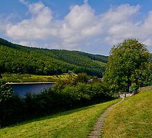 Derwent Edge by Pamsar