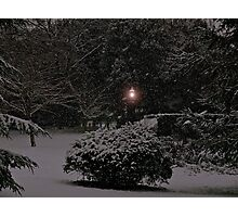 Is This Narnia? Photographic Print