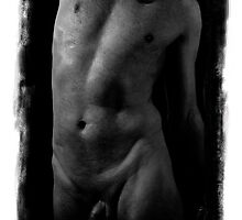 taut torso by jebCreate