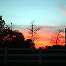 Colorful Sky by Cynthia48