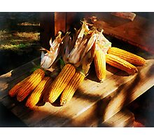 Vegetable - Corn on the Cob at Outdoor Market Photographic Print