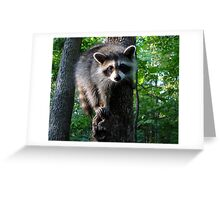 I ♥ Tree Climbing Greeting Card