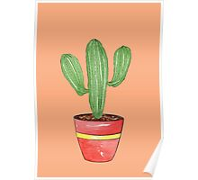 Cactus Mexi - Can Poster