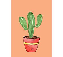 Cactus Mexi - Can Photographic Print