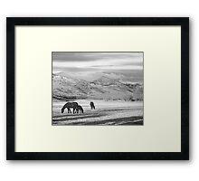 Rocky Mountain Colorado Country Morning BW Framed Print