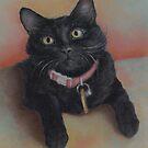 Little Black Kitty by Pam Humbargar