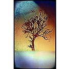 Abstract tree poster by Daniel  Taylor