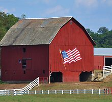 Proud to be an American in Ohio by Chad Wilkins