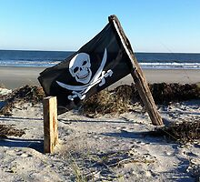 pirate flag by erhig