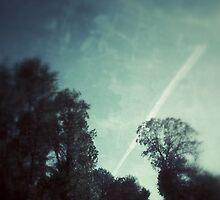 skyfly by erhig