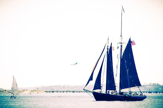 Black Masted Tall Ship by Elizabeth Thomas