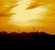 Arizona sunset by ADayToRemember