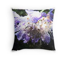 Alluring Throw Pillow