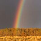Fall Rainbow by Kathi Arnell