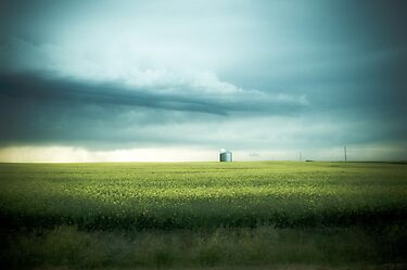 Alberta Prairies by Annie Lemay  Photography