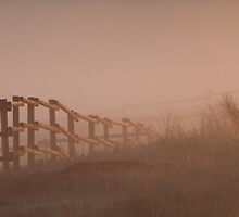 Fence in the Fog by Kathi Arnell
