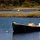 Tidal Pond Moorings by phil decocco